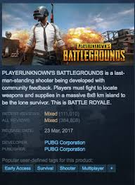 is pubg worth it what is pubg why is it so popular is it worth playing