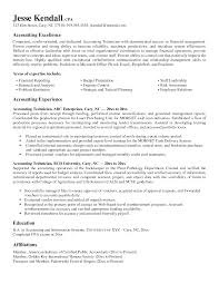 good accounting resume examples resume for your job application