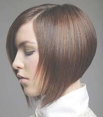 best 15 hair cuts for 2015 the best chinese bob haircuts styles