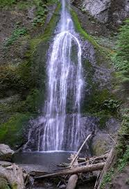 Lincoln Park Seattle Parks Hikes by 128 Best Hiking Puget Sound Images On Pinterest Hiking Seattle