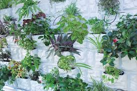 Home Vertical Garden by Amazon Com Palram Plantscape Vertical Garden Stone 2 Pack