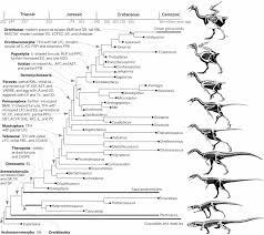 an integrative approach to understanding bird origins science