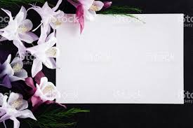 condolence card white blank condolence card with fresh flowers on the