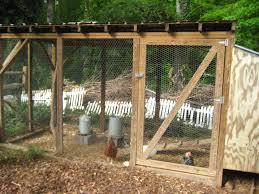The Backyard Chicken by Chickens U2013 Doggerel