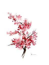 cherry blossom 3 by rachel dutton watercolor 30fifteen www