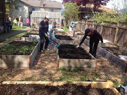 burnaby food first food security through community action and