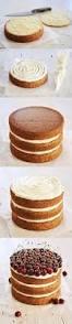 victoria sponge cake buttercream frosting appies
