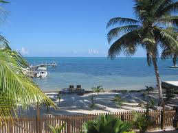 bird island belize airbnb carolyn u0027s other house beachfront cabins for rent in caye