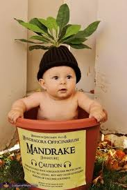18 Month Boy Halloween Costumes 25 Funny Baby Halloween Costumes Ideas