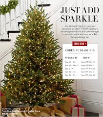 christmas tree delivery williams sonoma order today fresh christmas trees delivered to