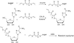 macromolecular pro drugs in antiviral research polymer