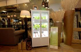 grow your own veggies u2013in a cabinet with no soil inquirer lifestyle