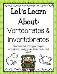 76 best education images on pinterest vertebrates and