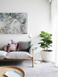 minimalist living room with interior plant caring your interior