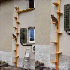 katzenleiter balkon 10 besten katzenleiter bilder auf aussen ein kleines