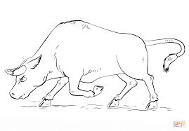 cartoon bull coloring page free printable coloring pages