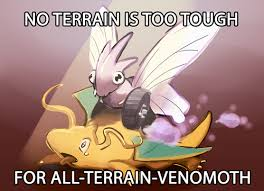 Shiny Geodude In Platinum Twitch Plays Pokemon Know - all terrain venomoth conquers all twitch plays play pokemon and