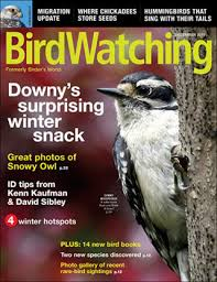 Backyard Birding Magazine Wildbird Magazine Media Kit Info
