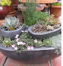 Patio Container Garden Ideas Container Garden Ideas 1000 Images About Container Gardening Ideas