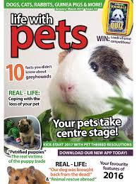 pets magazine lifestyle pet magazine