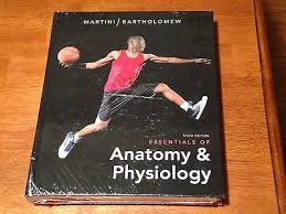 Fundamentals Of Anatomy And Physiology 6th Edition Essentials Of Anatomy U0026 Physiology 6th Edition Martini