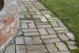 Concrete Driveway Paver Molds by How To Remove Mold U0026 Algae From Brick Pavers Remove Mold Brick
