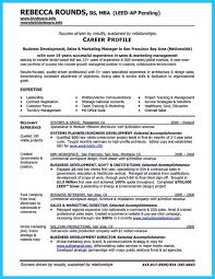 Healthcare Analyst Resume Analyst Resume Keywords Free Resume Example And Writing Download