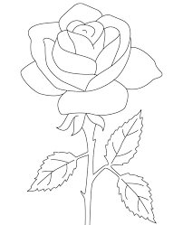rose coloring pages free print coloringstar