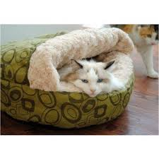 dog beds dog supplies epet hk free delivery