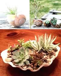 Garden Pots Ideas Planter Pots Ideas Cool Outdoor Pots Cool Outdoor Plant Pots