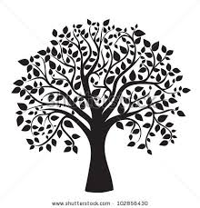 tree stock images royalty free images vectors