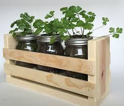 amazon com indoor herb garden kit great for growing an indoor