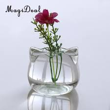aliexpress com buy magideal cat shaped glass vase hydroponic