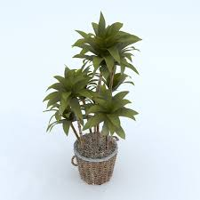 flowers and plants 3d model forest flowers and plants bonsai 07649
