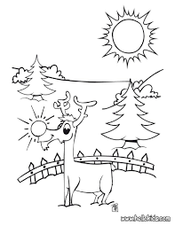 69 rudolph red nosed christmas reindeer coloring pages free
