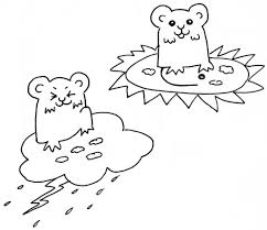 the role of hamsters in pacific northwest weather prediction u2013 the