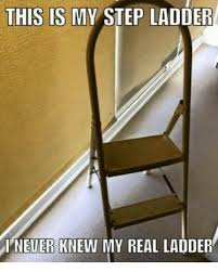 Ladder Meme - this is my step ladder never knew my real ladder meme on me me