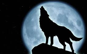 cartoon wolf howling free download clip art free clip art on