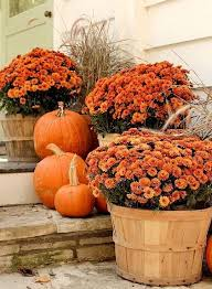 Fall Decorations For Outside The Home Best 25 Outdoor Fall Decorations Ideas On Pinterest Autumn