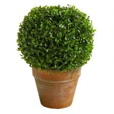 tan artificial boxwood ball potted plant christmas tree shops