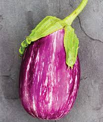 eggplant plants garden ready and easy to grow at burpee com
