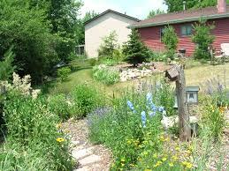 Home Landscape The Conservation Foundation