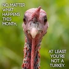 at least you re not a turkey thanksgiving pictures thanksgiving