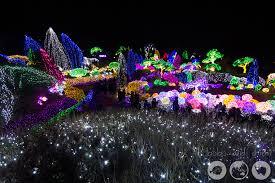 christmas light festival near me it s christmas at lighting festival seoul garden of the morning calm