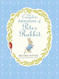 the rabbit book rabbit