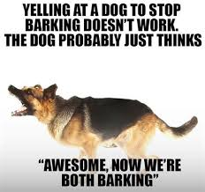 Dog Barking Meme - th id oip us30r5n tnfvvlhr3rxlowhag9