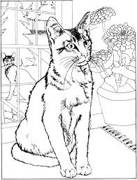 kids n fun com 68 coloring pages of cats and dogs