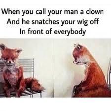 Stoned Fox Meme - stoned fox meme kappit