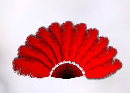 feather fans second marketplace animated ostrich feather fan