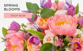 delivery flowers simi valley florist flower delivery by michael s flowers